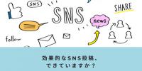 ロジカルなSNS投稿を意識した事はありますか?